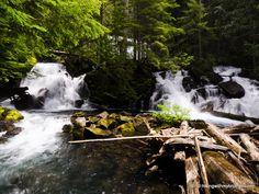 Goat Lake/Elliott Creek hike - near Granite Falls, WA