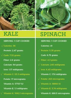 """For decades, spinach has ruled over all green leafy veggies as the gold standard of """"good-for-you"""" food. Healthy Tips, How To Stay Healthy, Healthy Recipes, Healthy Facts, Healthy Food, Spinach Health Benefits, Kale And Spinach, Food Facts, Health And Nutrition"""