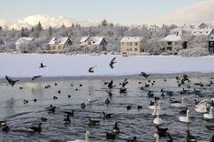 Las mejores #ciudades europeas para disfrutar de la #nieve