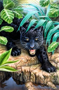 "Estimated Delivery Time 12 To 20 Days ""New"" Black Panther In The Jungle! This Is A Full Round Diamond Drill Painting, Bright And Colorful Diamonds. If You Love Big Cats This Diamond Painting Is One For Your Collection. Black Panthers, Big Cats Art, Cat Art, Animals And Pets, Cute Animals, 5d Diamond Painting, Cross Paintings, Wildlife Art, Animals Beautiful"