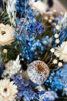 Blue dried flowers