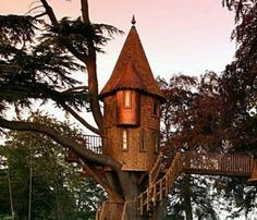 tree house castle