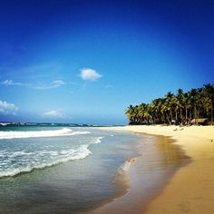 Punta Cana Beach!.... a beach I would love to visit one day, gorgeous!