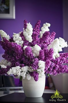 Lilac floral arrangement (with purple walls...why not?!)...Love lilacs!!!