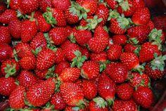 Cultured Strawberry Applesauce