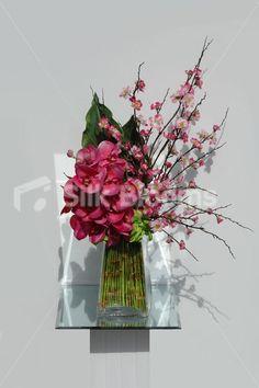liana-fuchsia-orchid-cherry-blossom-vase.jpg 550×825 píxeles