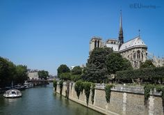 This is a small pedestrian bridge leading over towards the Notre Dame Cathedral, named the Pont au Double.  To see more go to www.eutouring.com/images_pont_au_double.html