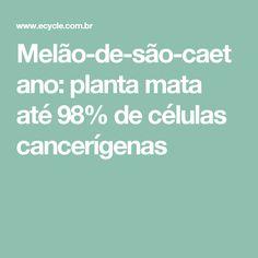 Melão-de-são-caetano: planta mata até 98% de células cancerígenas