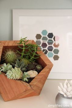 succulents and hexagons // simplified bee // #succulents #hexagon #bookshelves http://www.simplifiedbee.com/2014/01/office-organized-home-office-products.html