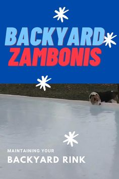 Building and maintaining a backyard skating rink. Outdoor Skating Rink, Ice Skating, Backyard Ice Rink, Project Ideas, Diy Projects, Get Outside, Ice Hockey, Home Improvement, Building