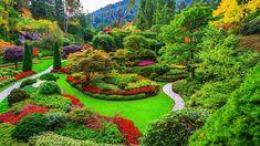 Kew Gardens, Asian Garden, Brooklyn Botanical Garden, Botanical Gardens, Prospect Park, Exotic Plants, Exotic Flowers, Colorful Flowers, Spring Flowers
