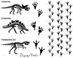 ~ SILHOUETTES ~ Dinosaur skeletons and footprints
