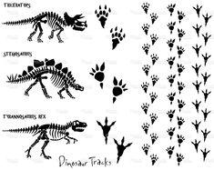 Dinosaur Skeleton & Footprints stock vector art 4679306 - iStock