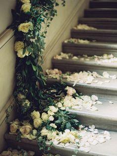 Toutes ces roses …