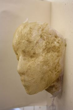 Fragility (leaf skeleton/clingfilm sculpture) | by Ruby Bird 12