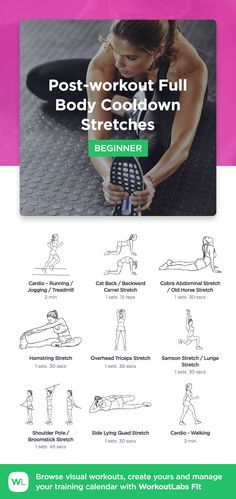 Post-workout Full Body Cooldown Stretches by WorkoutLabs Fit · View and download printable PDF: https://workoutlabs.com/s/grQ0G