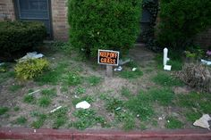 Image result for gardening gone wrong Parks N Rec, Grass, Things To Come, Fails, Gardening, Image, Grasses, Lawn And Garden, Make Mistakes