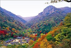 Korea in the fall, my favorite time of year here. Thank you to this beautiful place for all you have given