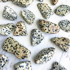 Dalmatian Jasper Tumbled Pocket Stone — Rocks with Sass Minerals And Gemstones, Rocks And Minerals, Crystals Minerals, Blue Calcite, Calcite Crystal, Yin Yang Balance, Rock Identification, Raw Rose Quartz, Crystal Grid