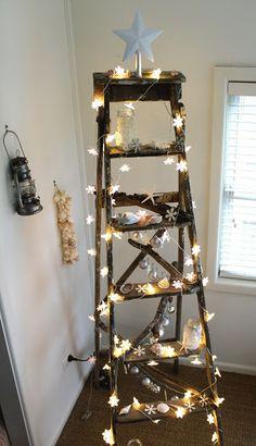 A Coastal Christmas Ladder / Desire Empire