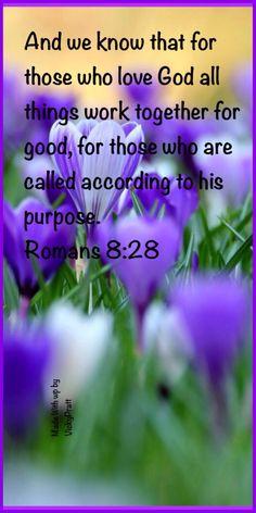 Romans 8:28. One of my favorite Bible verses