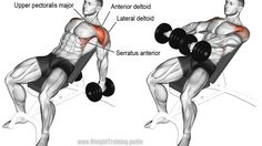 Incline dumbbell front raise exercise