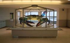 Jackie Leatherbury Douglass  - Anything made out of stained glass is going to gain looks of admiration, but when it is a sculpture of a crab the size of a small car, it's g...
