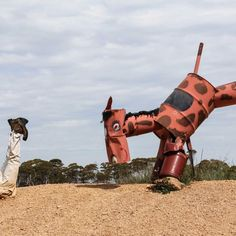 The Tin Horse Highway in the Wheatbelt town of Kulin in Western Australia is decorated with horses made from farmyard junk.