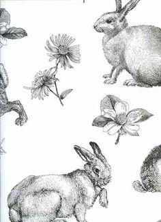 Contemporary Retro Vintage Wallpaper Rabbits Hares Animals Kitchen Shabby Chic | eBay