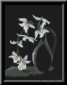 Gallery.ru / Орхидеи на черном - Цветы и натюрморты - Nega3