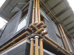 Gallery of Energy Efficient Bamboo House / Studio Cardenas Conscious Design - 2