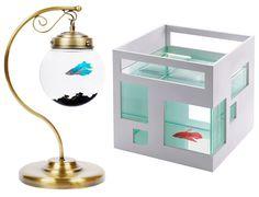 interesting fish tanks
