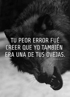 Alpha Wolf, Wolf Images, Nightmare Moon, Wolf Quotes, Memes, Words, Life, Pop, Truths