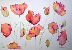 Watercolour painting VIBRANT POPPIES original art by artist