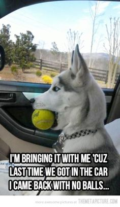 I'm bringing it with me cuz last time we got in the car I came back with no balls