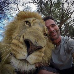 Selfie with a lion