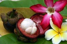 Kandungan Nutrisi Buah Manggis | http://misanthropecorp.blogspot.com/2014/08/kandungan-nutrisi-buah-manggis.html