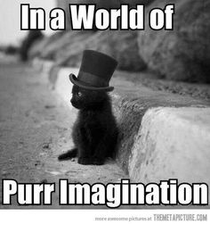 Purr imagination.