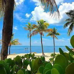 """I AM FLOURISHING WITH WEALTH AND BEAUTY NOW...""""Island Life  Islamorada  F L O R I D A . .  Photo Cred @mikeyc_ofd"""