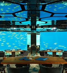 Undersea dining at Anantara Kihavah Villas, Maldives. Wow. Imagine having an event in this place, people would be entertained for hours watching the fish glide through the water. Such a great idea in one of the most beautiful places, one day I'll experience these clear waters, one day.