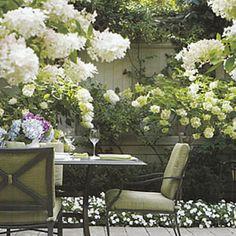 love white gardens