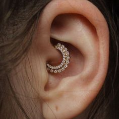 Got to take a picture of this healing daith from 2 months ago! Love this jewelry from @venusbymariatash