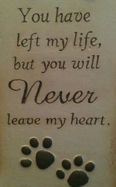 Dedicated to my Kibbles....miss her so much.  (Rip 12/31/2015)