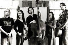 Elephant Revival, Gypsy Folk Celtic Bluegrass