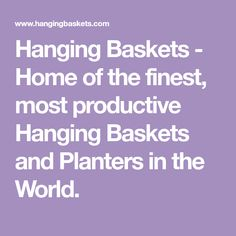 Hanging Baskets - Home of the finest, most productive Hanging Baskets and Planters in the World. Patio Planters, Hanging Planters, Hanging Gardens, Garden Crafts, Diy Garden Decor, Garden Ideas, Garden Tips, Garden Paths, Container Plants