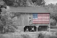 Patriotic Farm I
