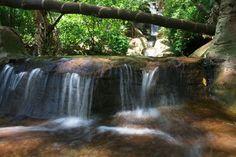 Pretoria Botanical Gardens Waterfalls Garden Waterfall, Port Elizabeth, Table Mountain, Kruger National Park, Pretoria, African Animals, Africa Travel, Beautiful Scenery, Waterfalls