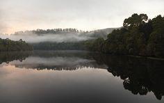 """The Pieman River flows through the heart of the Tarkine"" Photo: Peter Walton | The Tarkine Wilderness is threatened. Protest on Pinterest: pinterest.com/tarkine #SaveTarkine"