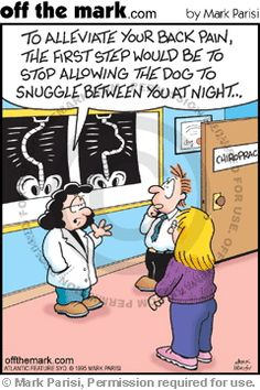 dog problems. chiropractic can help. http://LoveChiropracticCenter.com
