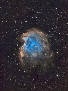 NGC 2174 - Monkey Head Nebula by John.R.Taylor, via Flickr